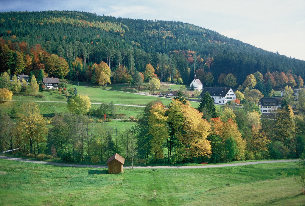 Herbst in Tonbach